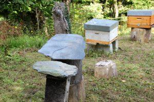 panales de abejas casa rural en llanes la boleta