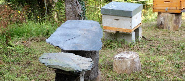 casa rural en llanes la boleta panales de abejas 750x330 - Fotos Llanes