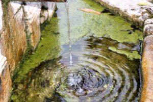 casa rural la boleta en llanes relax 2 300x200 - Fotos Llanes