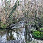 La Ruta del Rio Puron Llanes Asturias es una de las rutas más bonitas que se pueden hacer en el Concejo de Llanes, cercana a Casa Rural la Boleta