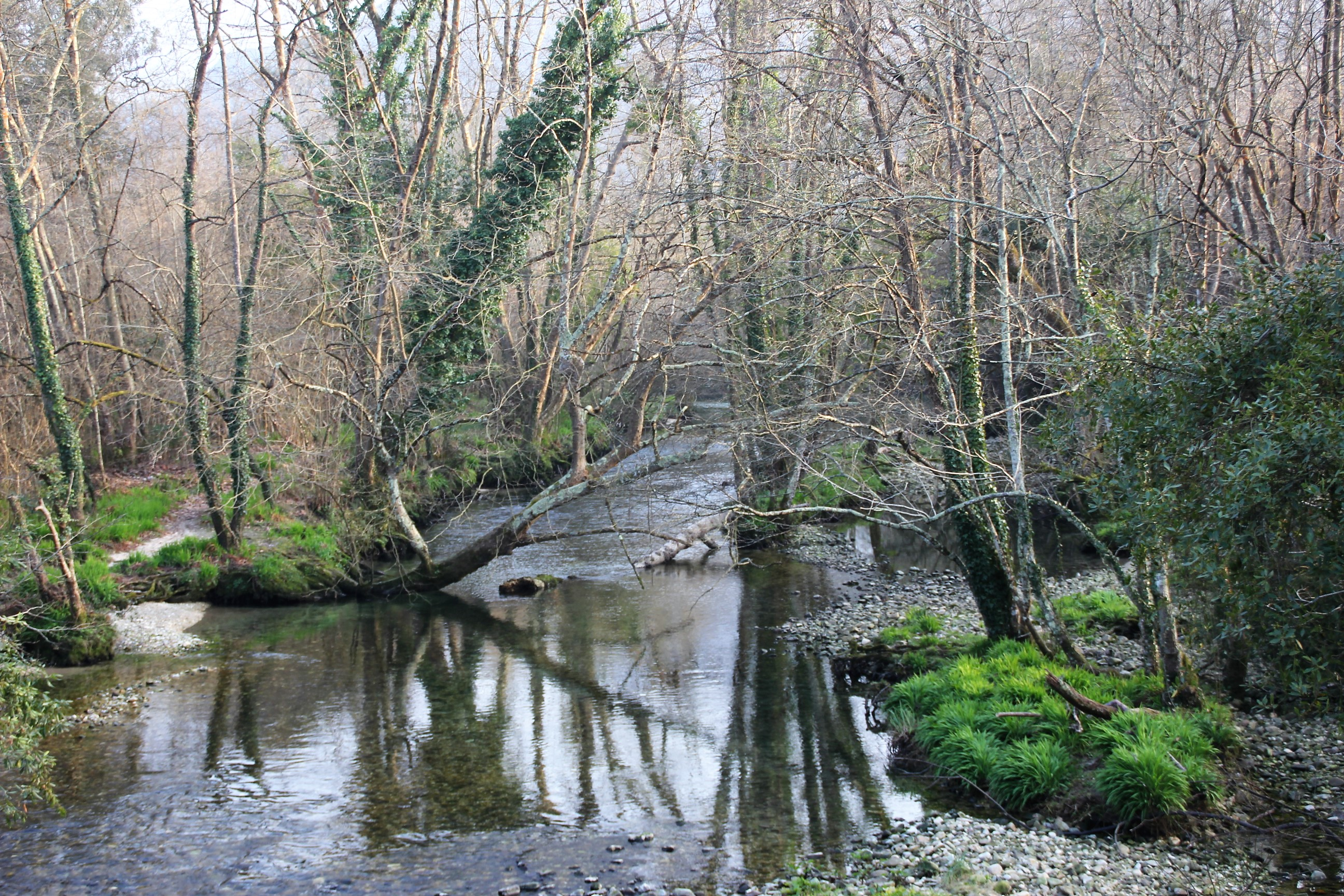ruta del rio puron casa rural la boleta - Ruta del rio Purón Llanes Asturias