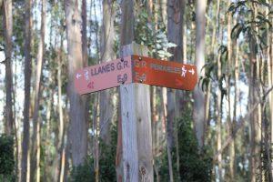 A la desembocadura del Rio Purón y Llanes o a Puertas de Vidiago. Vuelta de la visita a los bufones de Arenillas Asturias