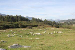 El paisaje que nos rodea en el camino a los Bufones de Vidiago Mar y Montaña